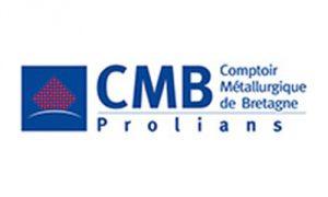 CMB-Q-Prolians
